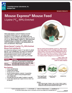 Mouse Feed Image